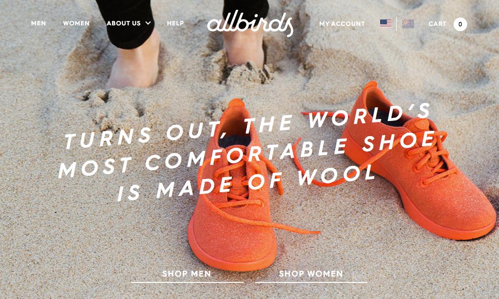 10.1 allbirds | Marketing Blog